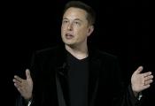 Elon Musk: Nhân viên lười học là do... sếp