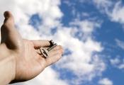 Câu chuyện gõ cửa nhà tuyển dụng 11 lần: Trước khi chạm tới thành công, thất bại chắc chắn sẽ đến trước và đến rất nhiều!