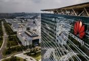 'Cục nợ' Huawei cản đường Mỹ - Trung Quốc đàm phán