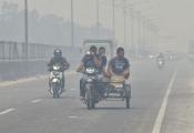 Giới siêu giàu châu Á đã làm gì để bảo vệ môi trường?