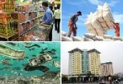 Phần 2: Đánh giá triển vọng kinh tế và dự báo chính sách 2012