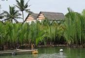 """Quảng Nam """"băm nát"""" rừng dừa để làm du lịch"""