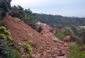 Quy hoạch du lịch Sơn Trà: Khai thác song hành cùng bảo tồn