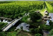 Kiên Giang: Kêu gọi đầu tư 7 dự án du lịch và 4 dự án nhà ở với hơn 5.000 tỷ đồng vốn