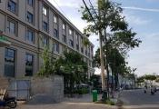Đà Nẵng: Xem xét dừng một trường quốc tế vì vi phạm xây dựng