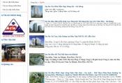 Hơn 13.000 m2 đất vàng đường Mai Chí Thọ về tay doanh nghiệp lợi nhuận dưới 1 tỷ đồng