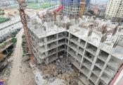 TP.HCM: Xử lý các dự án đã có quyết định giao đất, thuê đất trong giai đoạn 2015 – 2019