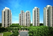 Vihajico: Tiếp tục mở bán căn hộ chung cư Rừng Cọ với giá 18,5 triệu đồng/m2