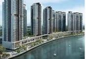 Tổng thống Singapore tham quan dự án Riviera Point