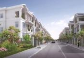 Bất động sản Khu Nam Thành phố chào năm mới bằng dự án biệt thự Nam Viên