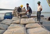 Doanh nghiệp xuất khẩu xi măng dè chừng lẫn nhau