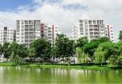 Celadon City: Nhiều ưu đãi đặc biệt khi mua căn hộ Block D