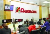 Sẽ cổ phần hóa Agribank trong 5 năm tới?