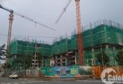 Tiến độ xây dựng dự án bất động sản