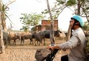 Giá đất Củ Chi bình tĩnh với siêu dự án của chúa đảo Tuần Châu