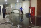 Chung cư Hồ Gươm Plaza rò rỉ bể phốt, bốc mùi hôi thối