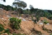 Đà Nẵng: Báo cáo Thủ tướng vụ xây biệt thự không phép trên bán đảo Sơn Trà