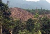 Hơn 2,8 nghìn ha đất, đất rừng không có hồ sơ quản lý