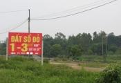 Khốn khổ vì mua đất Ba Vì 'đón đầu' quy hoạch