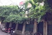 Biệt thự đòi từ cựu Chủ tịch Hà Nội Hoàng Văn Nghiên bị bỏ hoang