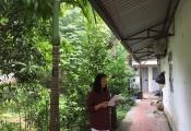 Hà Nội: Gần 800m2 đất đền bù chưa nổi 200 triệu đồng