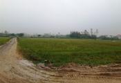 Nghệ An: Cưỡng chế thu hồi đất để... phân lô bán nền