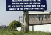 Bán đấu giá KCN Việt Hòa – Kenmark bằng một nửa tiền chủ đầu tư KCN nợ ngân hàng