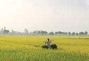 Doanh nghiệp khó tiếp cận bất động sản nông nghiệp