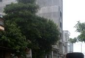 Quảng Ninh kỷ luật chủ tịch xã, lập phương án phá dỡ nhà 7 tầng vi phạm
