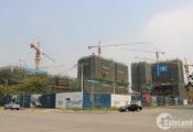 Dự án bất động sản mọc như nấm sau mưa quanh cầu qua đảo Kim Cương
