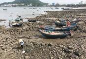Sau TP.HCM, Tập đoàn Tuần Châu muốn làm siêu dự án ở Vũng Tàu