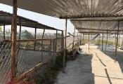 Kon Tum: Người dân thi nhau dựng lều chờ... đền bù