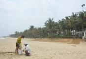 Bãi biển miền Trung bị xẻ thịt: Đường của dân thành của resort