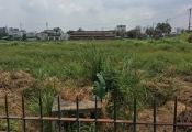 Kiên Giang cảnh báo về kẻ xấu dụ dỗ mua bán đất trái phép