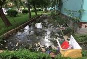 Khu tái định cư Đồng Tàu: Mỏi mòn vì kêu cứu