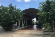 Thanh Hóa: UBND xã làm ngơ cho dân xây dựng nhà hàng trái phép trên đất nông nghiệp?!