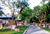 """Đà Nẵng: Loạt dự án """"rùa bò"""" bị đề nghị thu hồi để làm công viên"""