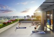Tập yoga giữa không gian xanh trên đỉnh tòa nhà