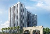 Tập đoàn Nam Cường mở bán và khai trương nhà mẫu dự án Anland Premium
