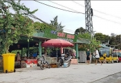 """Quảng Ninh: UBND huyện Cô Tô """"hô biến"""" hàng ngàn m2 rừng phòng hộ thành đất """"bìa đỏ"""" ?"""