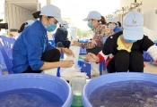 Quảng Ninh sắp có khu nông nghiệp công nghệ cao trị giá hơn 800 tỉ đồng