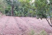 """Vụ đền bù đất """"giá bèo"""" ở Thừa Thiên Huế: Cơ quan chức năng lên tiếng"""