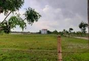 Quảng Bình: Giao 54ha đất trái thẩm quyền, loay hoay xử lý