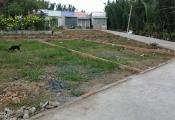 Có nên mua đất phân lô nhưng chung sổ đỏ?