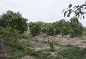 Bồi thường khi thu hồi đất đấu thầu ở địa phương