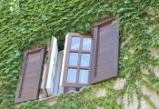 Quy định về trổ cửa sổ ra lối đi chung