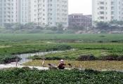 Tiền sử dụng đất phải nộp khi chuyển từ đất nông nghiệp sang đất ở