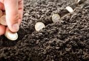 Quy định về miễn, giảm tiền sử dụng đất khi chuyển đổi mục đích