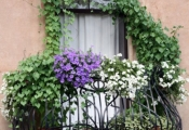 Trang trí ban công cho nhà thêm xinh