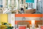 6 màu sắc nhiệt đới trang trí nhà đón Tết